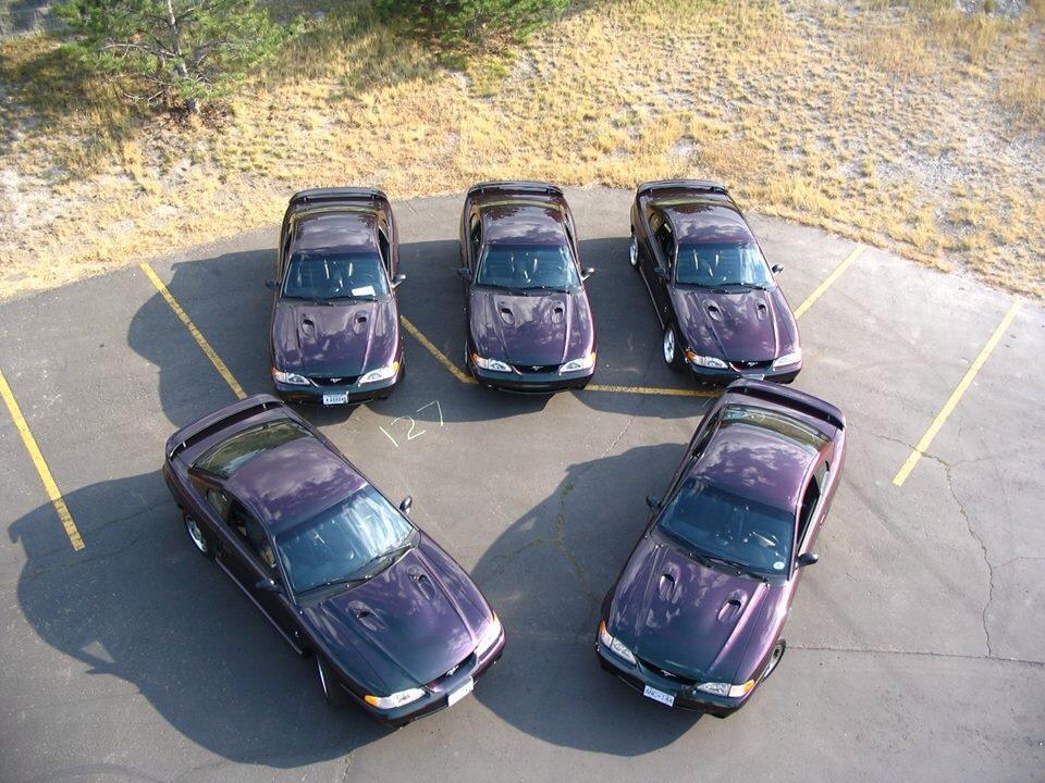 5 1996 Mystic Cobras